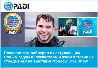 Moscow Dive Show: Email marketing