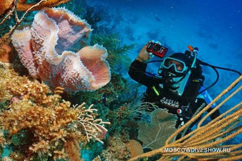 Камеры для подводной съемки