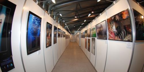 Выставка Подводной Фотографии MDS 2018