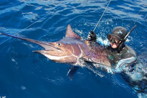 Морская подводная охота («MPD»)