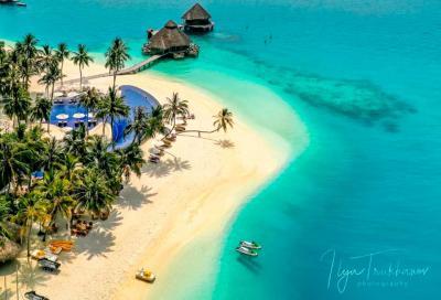 Возможности для дайвинга на курортах Мальдивских островов