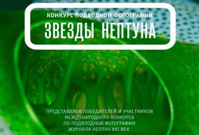 Награждение победителей 2-го международного конкурса по подводной фотографии «Звезды Нептуна»