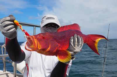 Спортивная рыбалка на Мальдивах
