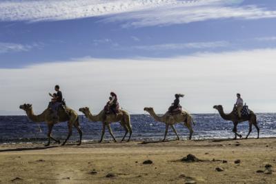 Дахабские каникулы