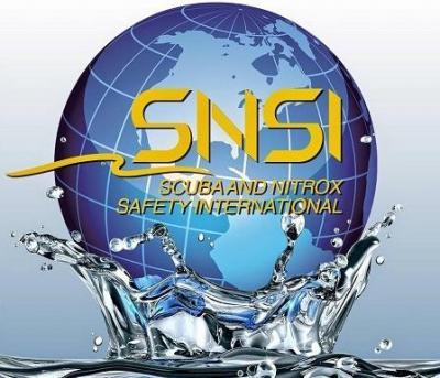 Новые возможности: обучающее агентство SNSI теперь и в России