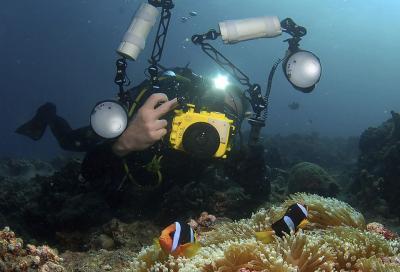 Азы подводной фотографии