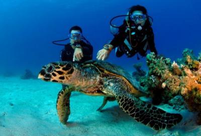 Мальдивиана