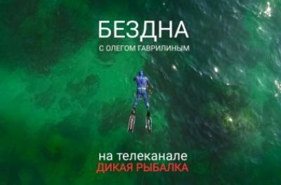 Презентация проекта «Бездна»