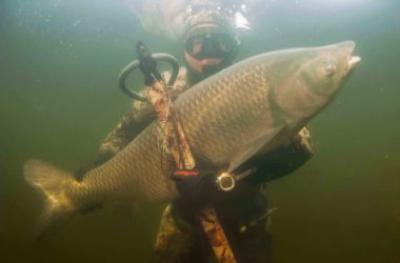 МПО собирает друзей: подводная охота на озере Балхаш