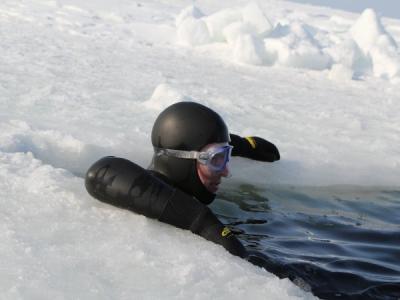 Под лёд