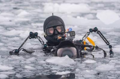 Погружение в Антарктиду
