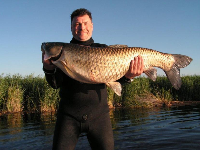 Рыбалка в дельте реки Или