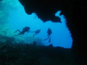 The diving center