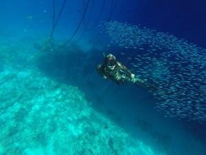 A school of spearfishing and freediving of Yury Smolnikov is on Moscow Dive Show.