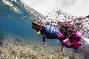 Яркие лайкровые костюмы и маски от Scubapro для безмятежного отдыха на море