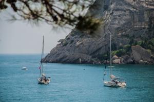 Черноморская чартерная о работе в условиях кризиса